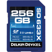 Delkin devices ddsd633256gb a 1