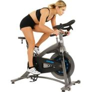 Sunny health and fitness 5100 1