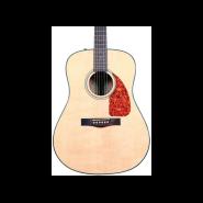 Fender 0961518021 1