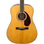 Fender 960250221 1