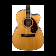 Fender 960271221 1