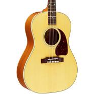 Gibson lsaeannp1 1