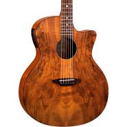 Luna guitars gypespalt 1