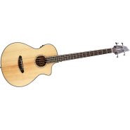 Breedlove purbass 1