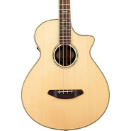 Breedlove stgbass 1