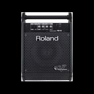 Roland pm 10 1