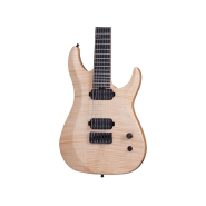 Schecter guitar research 251 1