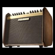 Fishman pro lbx 500 1