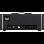 Morgan amplification sw22r head 1