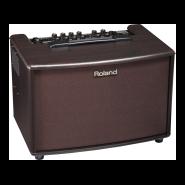 Roland ac 60rw 1