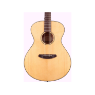 Breedlove disconlh 1
