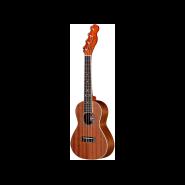 Fender 0955650021 1
