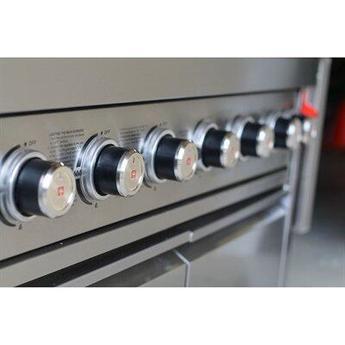 Swiss grills bi460 4