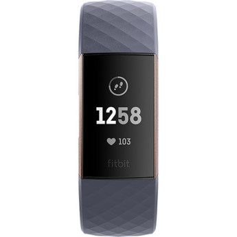 Fitbit fb409rggy 2