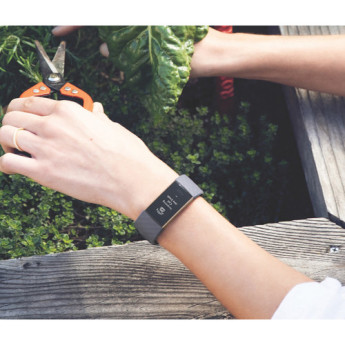 Fitbit fb409rggy 3