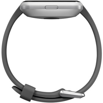 Fitbit fb415srgy 4