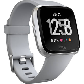 Fitbit fb504srgy 1