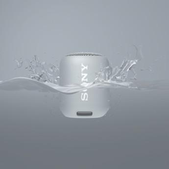 Sony srsxb12 h 5
