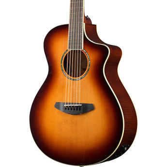 Breedlove stuconc12 2015 1