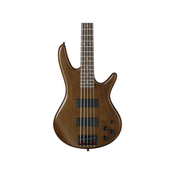 Ibanez gsr205bwnf 1