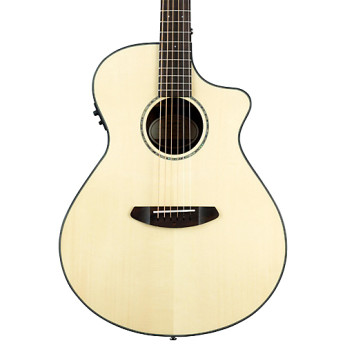 Breedlove purconceb 1
