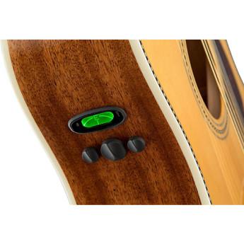Fender 960250221 7
