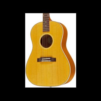 Gibson lsaeannh1 1