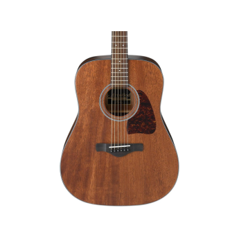 Ibanez aw54opn 1