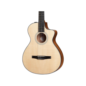 Taylor 312ce n 1