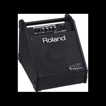 Roland pm 10 2