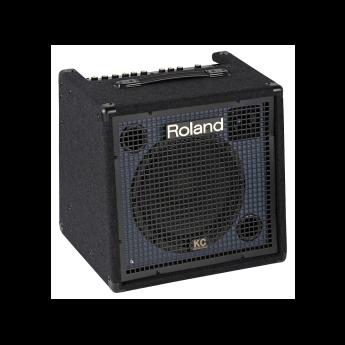 Roland kc 350 1