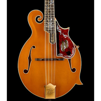 Gibson bgf5mm120amgh1 1