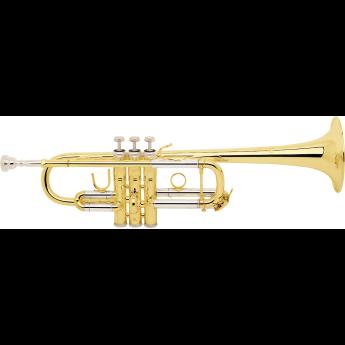 Bach c180l239w13 1