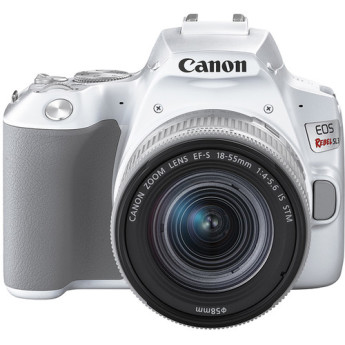 Canon 3457c001 7