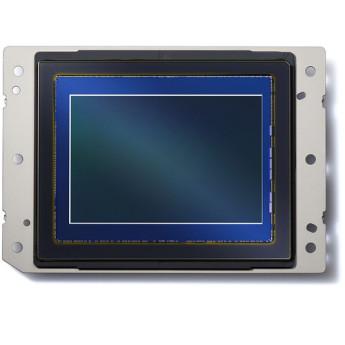 Nikon 1585 10