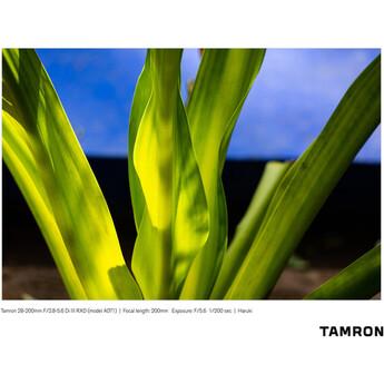 Tamron a071 10