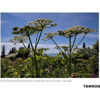 Tamron afa041c 700 25