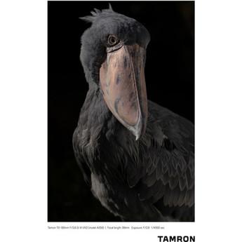 Tamron afa056s 700 14