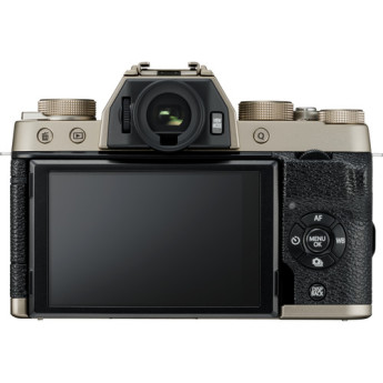 Fujifilm 16583016 3