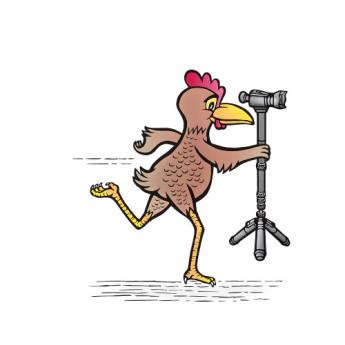 Varizoom chickenfoothead al 11