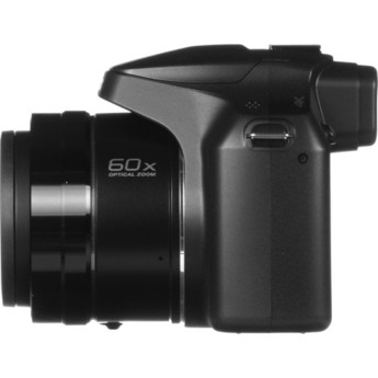 Panasonic dc fz80k 12
