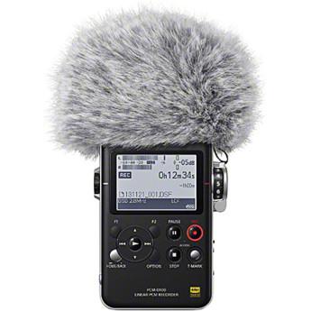 Sony pcm d100 10