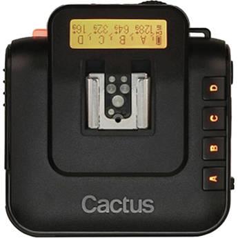 Cactus dicflawftv6 1