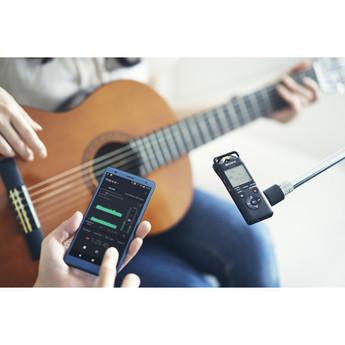 Sony pcm a10 15