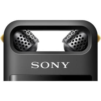 Sony pcm a10 9
