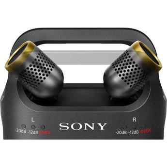 Sony pcm d10 6