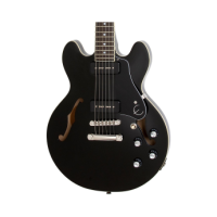 Semi hollow hollow body electric guitars